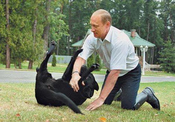 """""""Баб в Европе не хватает. Они там собак насилуют. Идешь по улице и везде слышен их вой"""", - сторонники русского мира об идеях европейского либерализма - Цензор.НЕТ 7563"""