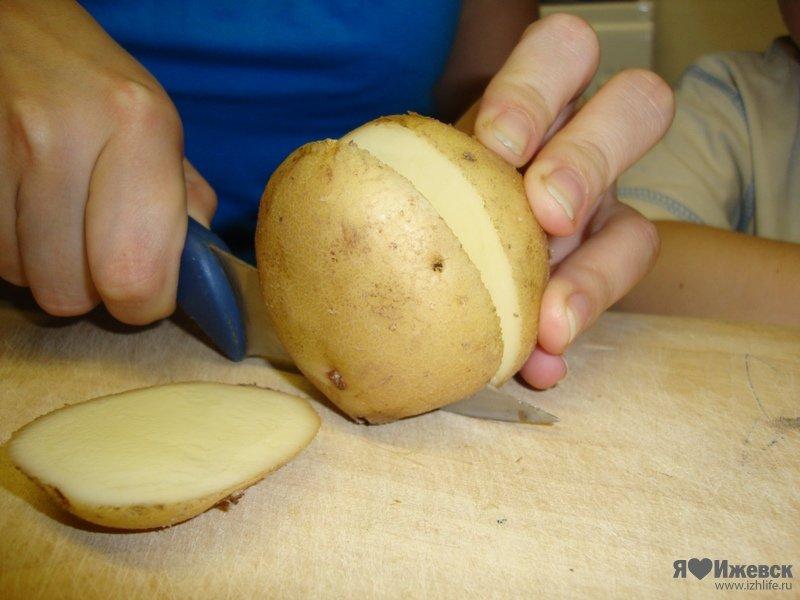чебурашка из картошки поделка фото