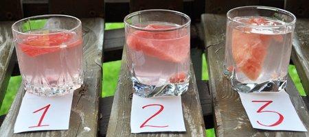 Как проверить качество арбуза в домашних условиях 448