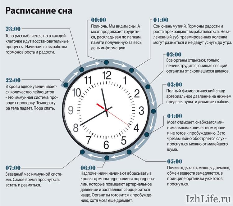 Каждого часа стоимость часа автошкола стоимость