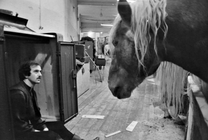 За кулисами цирка и в холле стоял специфический запах, ведь среди артистов всегда было много животных