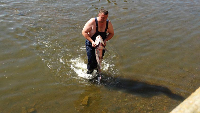 рыбалка на рефтинском фото
