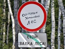 Трасса в Петербург пройдет через Химкинский лес