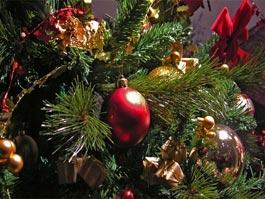 Главная Елка Октябрьского района Ижевска откроется 24 декабря