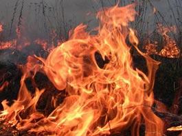 В Ижевске в мусоре сгорел неизвестный мужчина