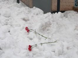 Возбуждено уголовное дело по факту гибели бабушки и внука