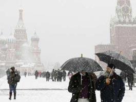 В Москве сильный снегопад и ветер повалили 500 деревьев