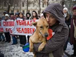 В Ижевске пройдет пикет в защиту животных