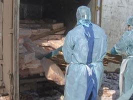 В Ижевск попытались провезти зараженное чумой сало под видом… краснодарских попугаев!