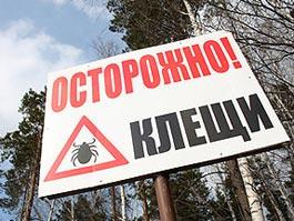 Более 450 жителей Удмуртии покусали клещи