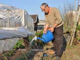 Советы специалистов: Как ижевчанам собрать хороший урожай