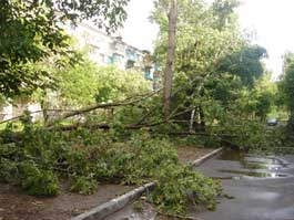 По Ижевску пронесся ураганный ветер