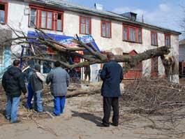 В ближайшие часы по Ижевску пронесется ураганный ветер