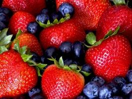 Онищенко не запрещал импорт ягод из Европы