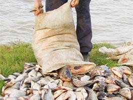 В Удмуртии браконьер установил рекорд по ловле рыбы