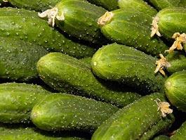 Россия отменит запрет на европейские овощи