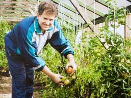 Что выращивают на своих участках ижевские ВИПы