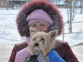 Какую погоду синоптики обещают в Ижевске с 8 по 13 ноября