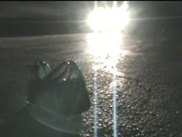На ночной дороге под Ижевском сбили загадочного пешехода