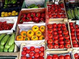 Геннадий Онищенко разрешил ввоз овощей из Польши