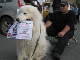 В акции протеста против высоких цен на бензин в Ижевске участвовали…собаки
