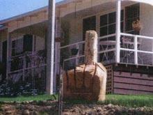 Поссорившийся с соседями австралиец установил на своем участке гигантский