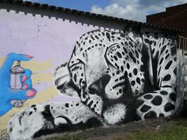Депрессивный пригород Ижевска художники разрисовали яркими красками