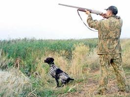 3 сентября в Удмуртии открывается сезон охоты