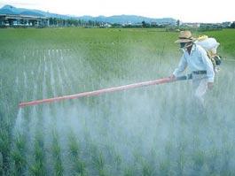 В Ижевске большая часть пестицидов продается незаконно