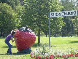Как ижевские студенты собирали клубнику в Финляндии и строили спортивные объекты в Сочи