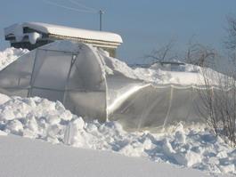 Ижевчанка выиграла суд по рухнувшей от снега теплице