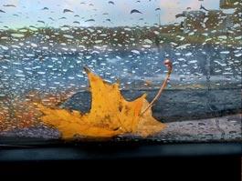 Когда в Ижевске закончатся дожди?
