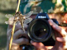 Стартует осенний фотомарафон «Ижевск, я люблю тебя!»