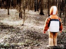 В Удмуртии бабушка потеряла в лесу 2-летнего мальчика