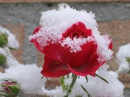 Синоптики обещают снег в Ижевске