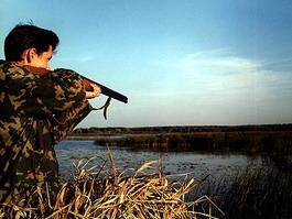 Для 56 охотников на лосей в Удмуртии отдых закончился уголовным наказанием