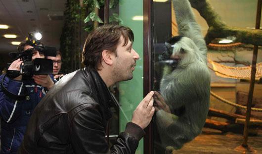 Гена Букин стал опекуном обезьянки-предсказателя в ижевском зоопарке