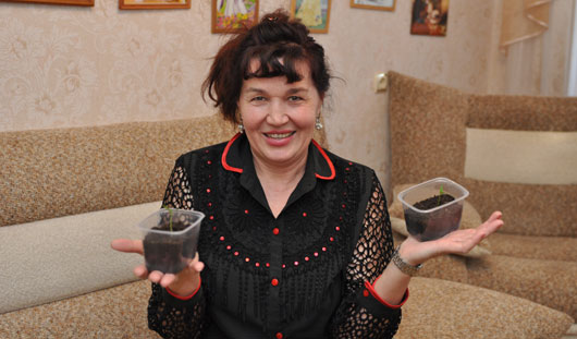 Эксперименты ижевчан: по три урожая с грядки
