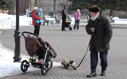 300 отремонтированных за ночь ям и выгуливающий деда кот: о чем утром говорят в Ижевске