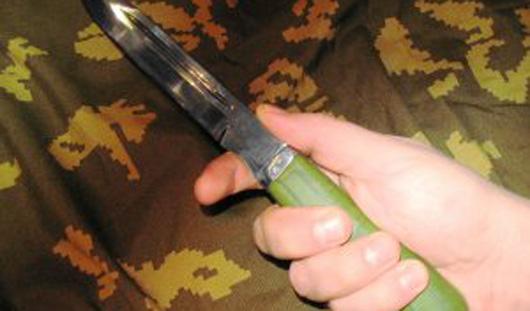 В Удмуртии бабушка порезала ножом внука и его друга