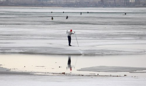 Фотофакт: «водного» лыжника заметили на ижевском пруду