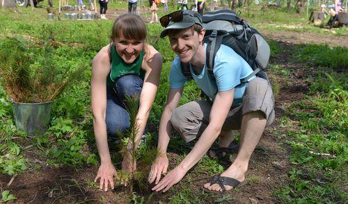 Фотофакт: ижевчане высадили около зоопарка 500 сосен