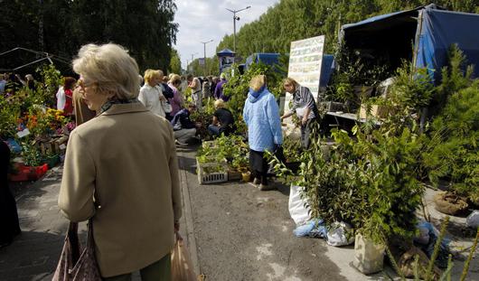 Ярмарка для садоводов пройдет в Ижевске