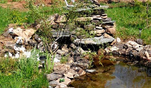 Сад камней: как ижевчанам создать свой рокарий