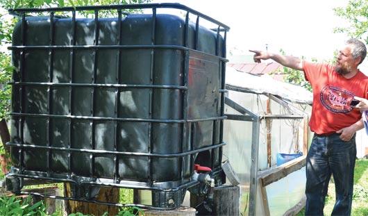 Ижевчане делятся секретами выращивания огурцов