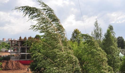 Вечером 20 июня в Ижевске ожидаются гроза и штормовой ветер