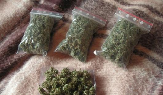 Наркоконтроль нашел 10 килограмм марихуаны в Ижевске