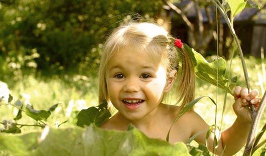 Какие растения могут быть смертельно опасными для ижевчан