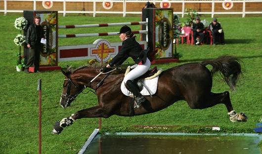 В Ижевске пройдут соревнования по конному спорту