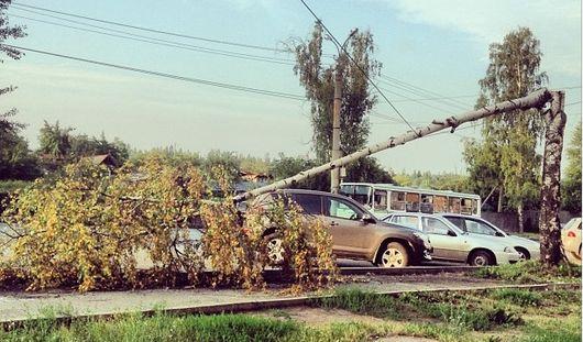 Запретные конфеты и упавшее дерево: о чем сегодня утром говорят в Ижевске